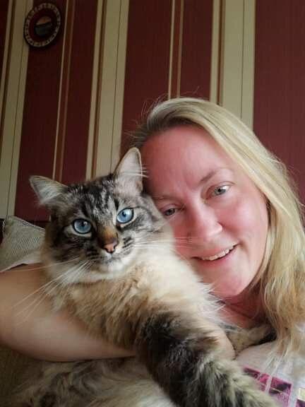 Cat Sitting Service Murieston