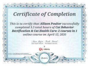 Cat Sitter Pet Services West Lothian Murieston West Lothian